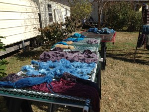 Dyeing demonstrations