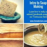 Soap making classes at Three Creeks Farm